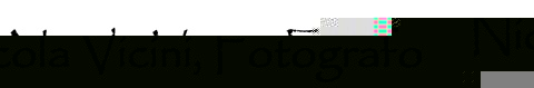 nicolavicini.it logo